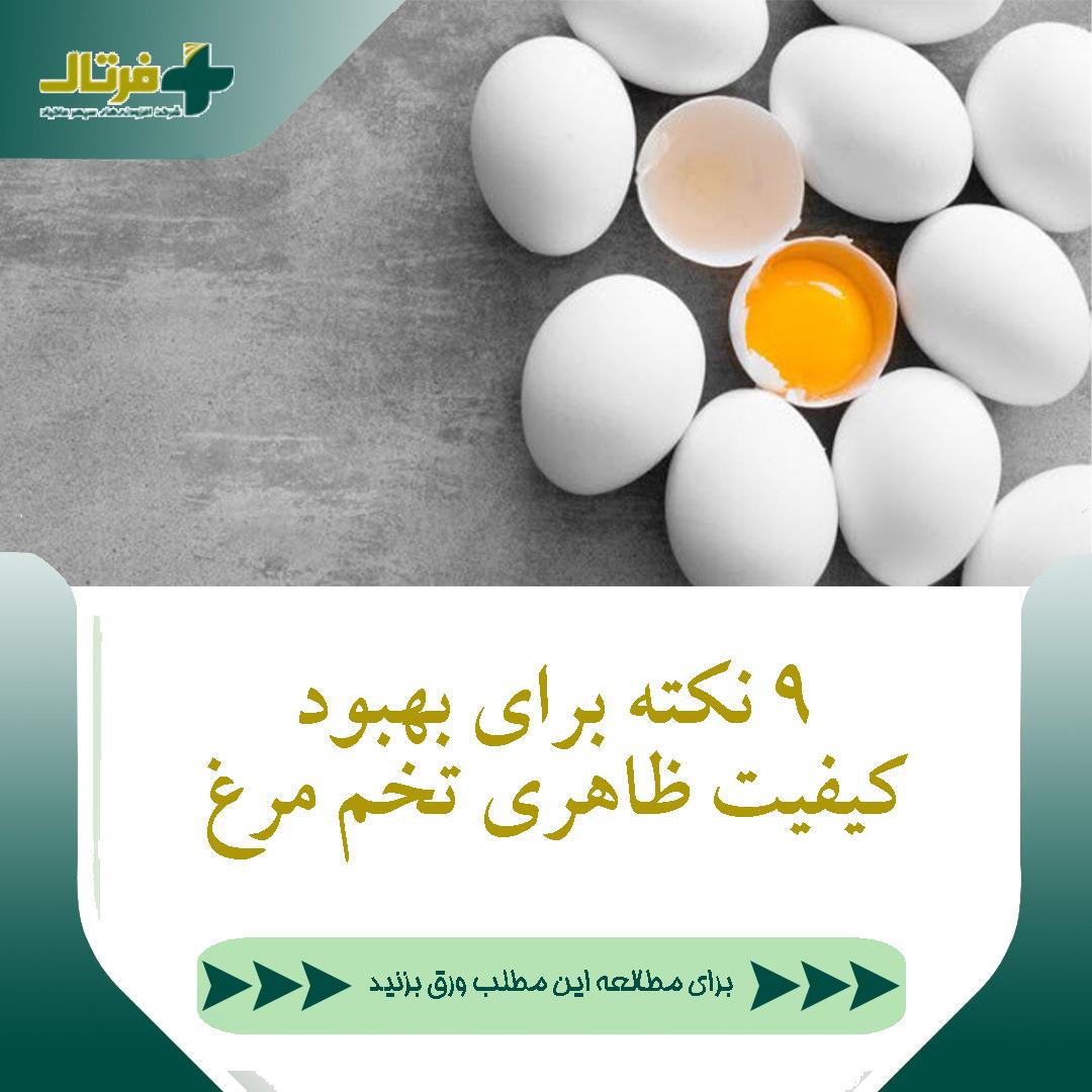 9 نکته برای بهبود کیفیت ظاهری تخم مرغ