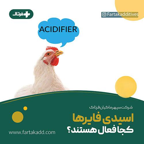 اسیدیفایر - سپهر ماکیان فرتاک
