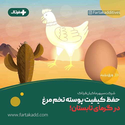 اثر تنش گرمایی بر ضخامت پوسته تخم مرغ