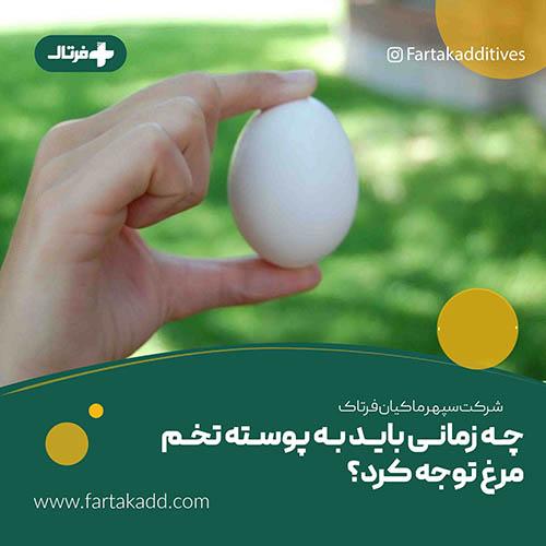 حفظ کیفیت پوسته تخم مرغ